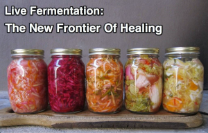 Live fermentation improves the bio-availability of minerals present in food as well as creating new nutrients