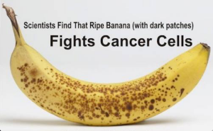 Ripe bananas contain TFE molecules that can inhibit the development of abnormal cells