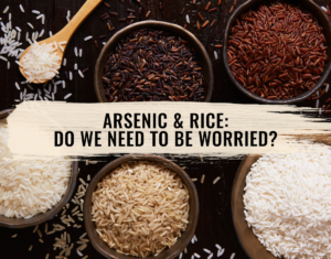rice is grown under flooded conditions where irrigation water is often contaminated with arsenic