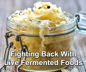 Make your immune system less hospitable to infection with live fermented foods